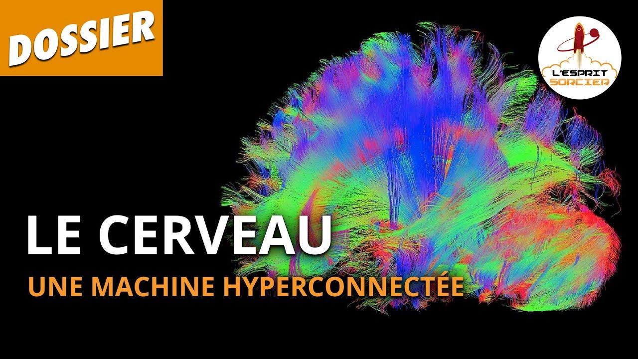 Documentaire Le cerveau, une machine hyperconnectée