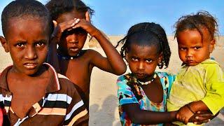 Documentaire Les enfants du désert – Ali, enfant des Allols