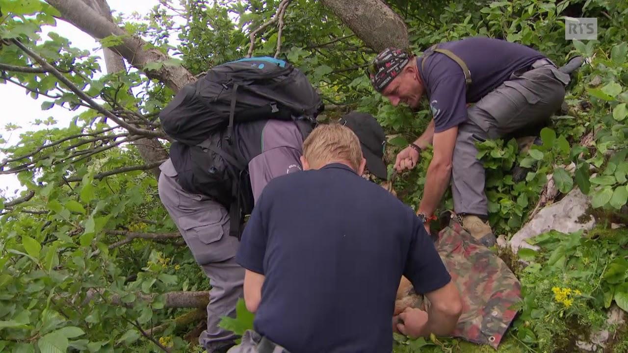 Documentaire L'homme au bois, un garde faune qui se rêve en cerf, roi de la forêt jurassienne