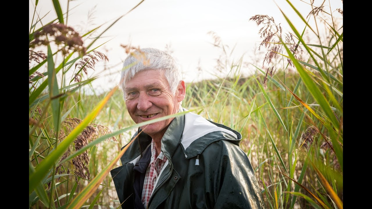 Documentaire L'homme des marais ou le sauvetage du plus grand marais lacustre