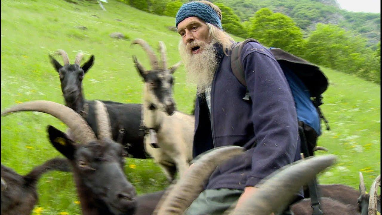 Documentaire Mon royaume pour une chèvre ou la vie à l'alpage