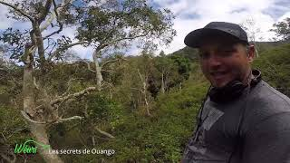Documentaire Les secrets de Ouango