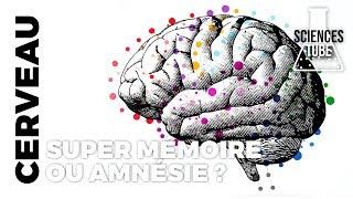 Documentaire Cerveaux : super mémoire ou amnésie ?