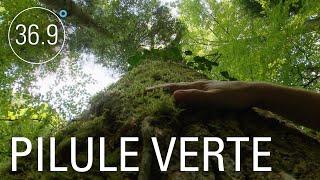 Documentaire Comment la nature soigne