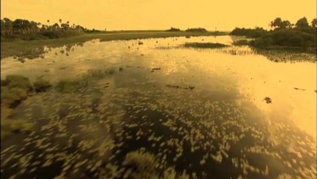 Documentaire Voyage en eau trouble