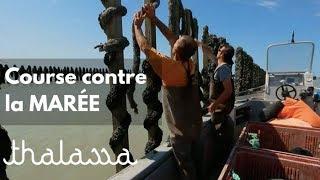 Documentaire Course contre la marée