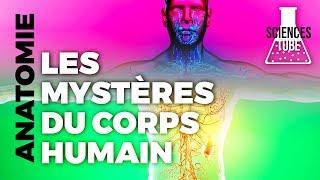 Documentaire Les mystères du corps humain – Les super pouvoirs de l'énergie vitale