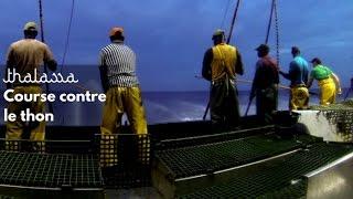 Documentaire Course contre le thon