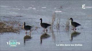 Documentaire Le Parc du Marquenterre