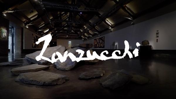Documentaire Pierre Zanzucchi, un univers en liberté