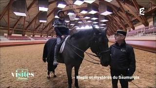 Documentaire Le Cadre noir de Saumur