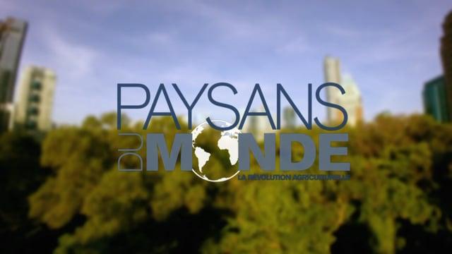 Documentaire Paysans du monde –  Singapour