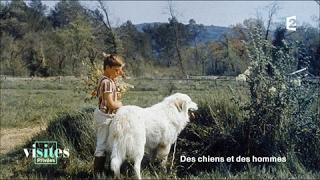 Documentaire Patou des Pyrénées, chien de montagne