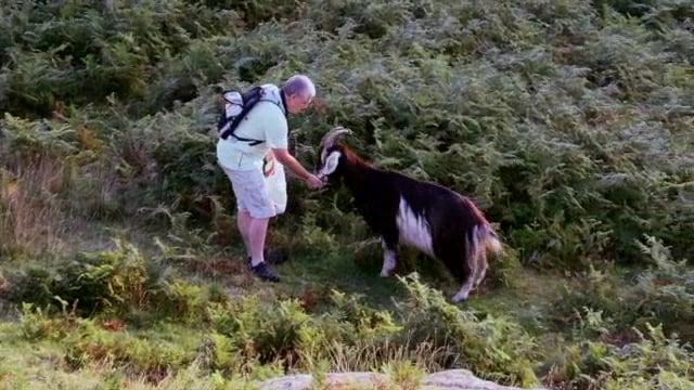 Documentaire Rencontres en terres de chèvres
