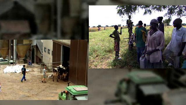 Documentaire L'agriculture paysanne : stop ou encore?