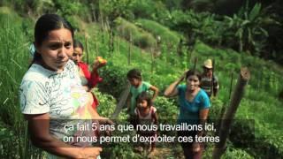 Documentaire Salvador, plus loin que le soleil