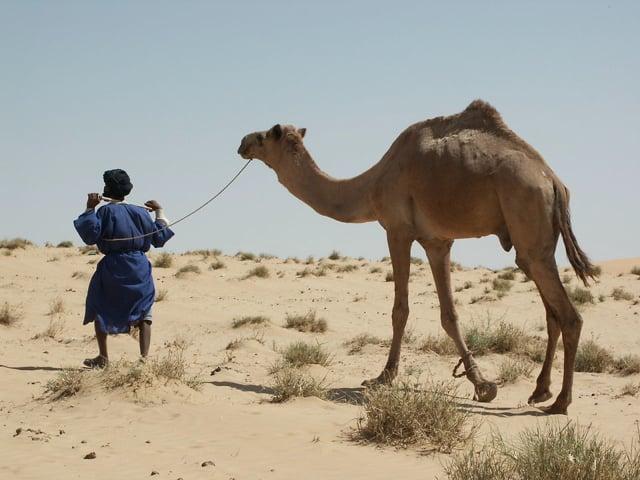 Documentaire Touaregs, la fin du rêve nomade
