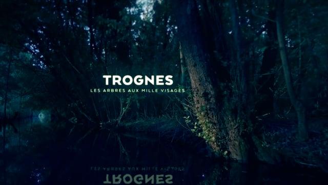 Documentaire Trognes, les arbres aux mille visages