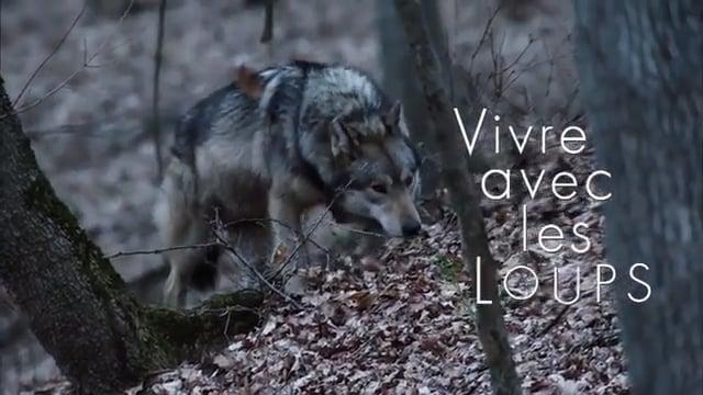 Documentaire Vivre avec les loups