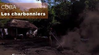 Documentaire Cuba – Les charbonniers