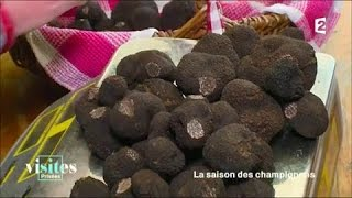 Documentaire La truffe