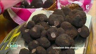 Documentaire La truffe