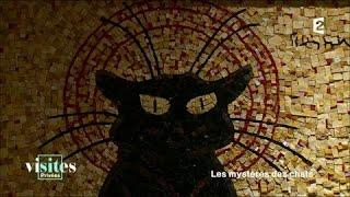 Documentaire Le chat noir