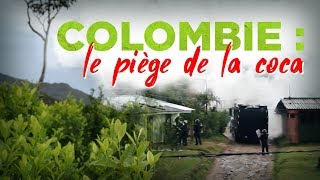 Documentaire Colombie : le piège de la coca