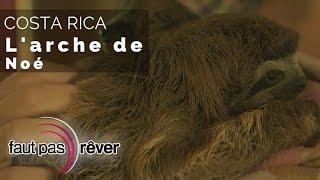Documentaire Costa Rica, le paradis vert – l'arche de Noé