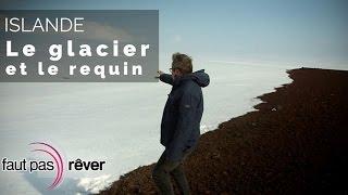 Documentaire Islande, de glace et de feu – le glacier et le requin