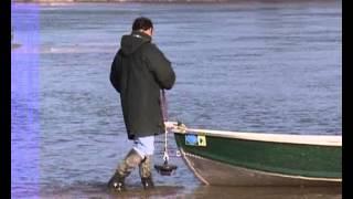 Documentaire La Saône et ses silures