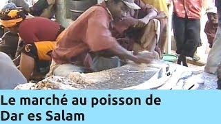 Documentaire Le marché au poisson de Dar es Salam