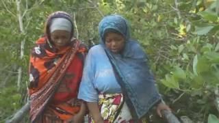 Documentaire Les femmes de Wasini