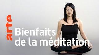 Documentaire Les étonnantes vertus de la méditation