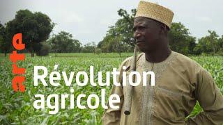 Documentaire Nigeria : cultiver la paix