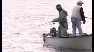 Documentaire Le lac de Biscarosse et ses sandres