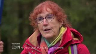 Documentaire Au coeur de la Moselle gallo-romaine