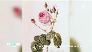 Documentaire Pierre-Joseph Redouté, les fleurs au bout du pinceau