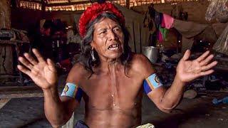 Documentaire Amyu, l'armée des hommes guêpes