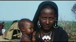 Documentaire Au SAHEL, en Afrique, le développement ou la survie ?