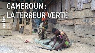 Documentaire Cameroun : la terreur verte
