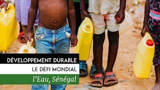 Documentaire Développement durable, le défi mondial – Sénégal, l'eau