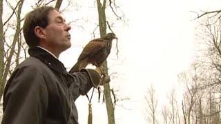 Documentaire Fauconnier pour la vie