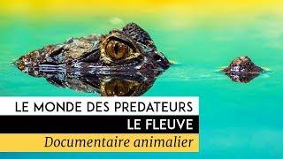 Documentaire Le monde des prédateurs – Le Fleuve