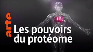 Documentaire Les secrets du corps humain