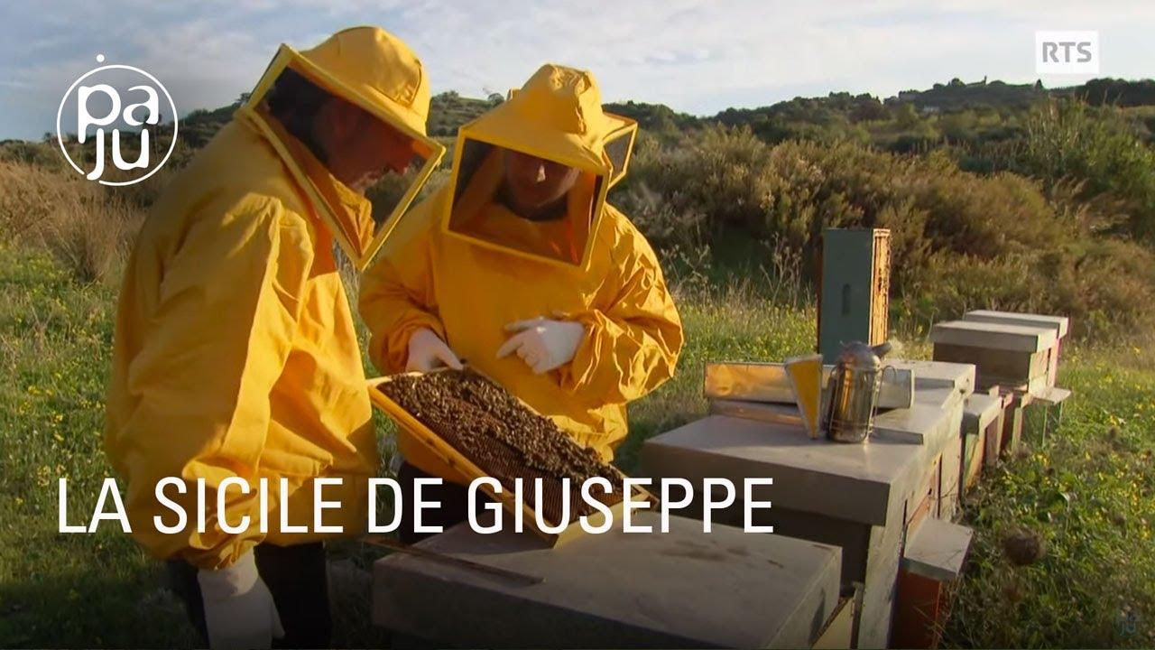 Documentaire Amoureux de sa terre natale et passionné d'apiculture, Giuseppe est retourné vivre au pays