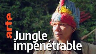 Documentaire Amérique du sud, sur la route des extrêmes | Episode 1 : La jungle