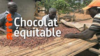 Documentaire Chocolat : le commerce équitable est-il possible ?