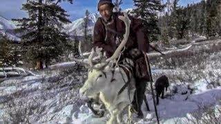 Documentaire Le peuple des rennes