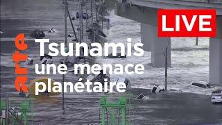 Documentaire Tsunamis, une menace planétaire